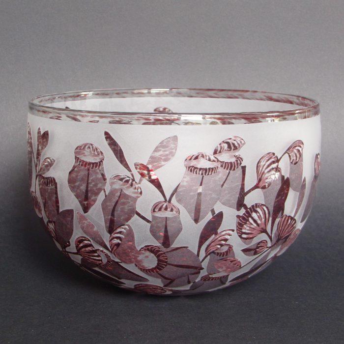 Cephalotus follicularis bowl
