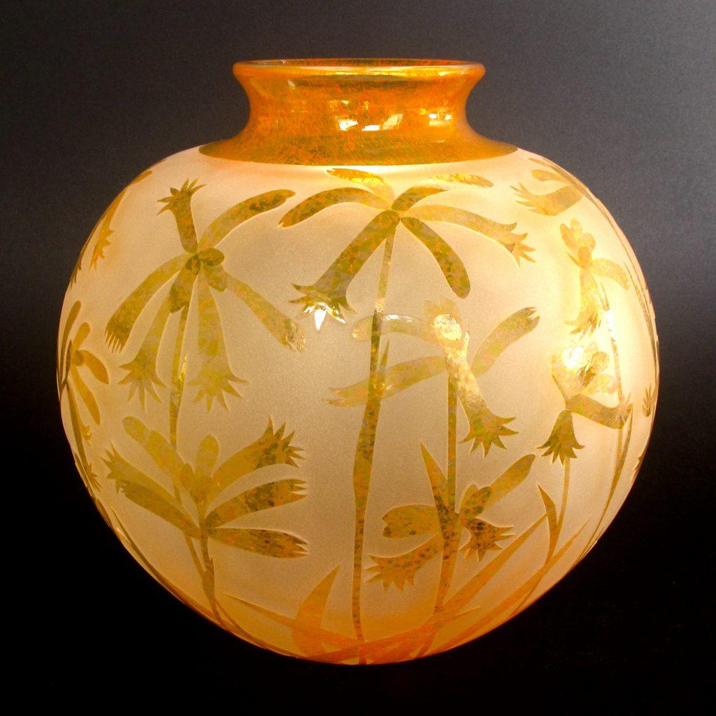 Anigozanthos humilis vase