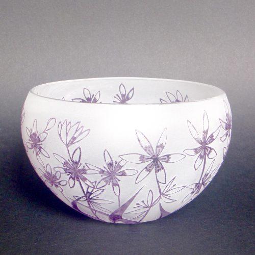 Wurmbea bowl